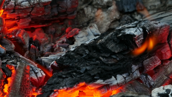 Download Hot Coal Campfire nulled download