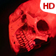 Human Skull 0121