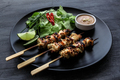 Satay is a Malaysian-style kebab. It  served with  peanut sauce, slivers of cucumbers and onions.