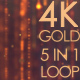 4K Gold Particle Pack 5 in 1
