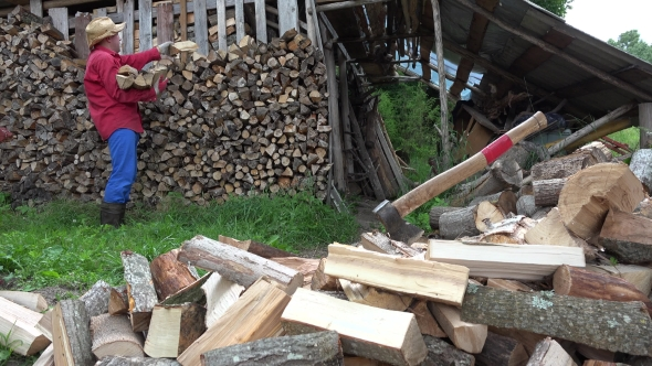 VideoHive Garden Worker Man Guy Stack Chopped Firewood Near Woodshed 17012663