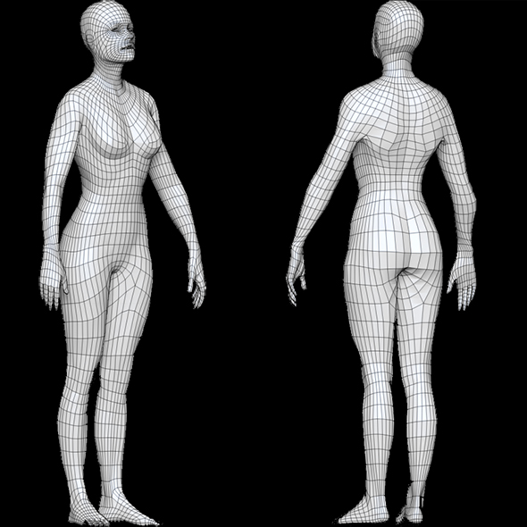 Base mesh Female