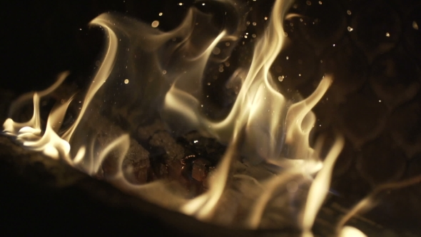 VideoHive Burning Wood In The Fireplace 17037269