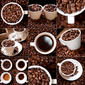 Collection of fresh coffee aromatic beans and caffeine products