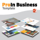 ProIn Business Template