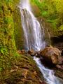 Beautiful Lush Waterfall - PhotoDune Item for Sale