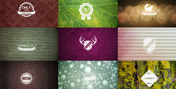 After Effects Project - VideoHive Multi Logo Intro 1715658