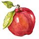 Watercolor Fruits Set