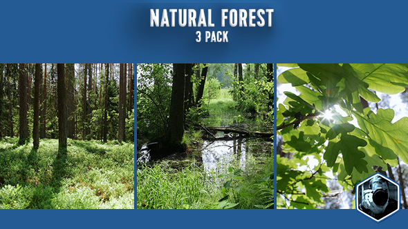 Download Natural Forest 3-pack nulled download