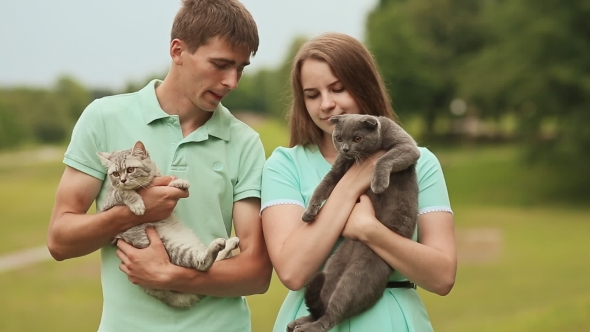 Download Guy And Girl Holding Hands On The Scottish Fold Cat And Gray British Cat. nulled download