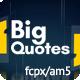 Big Quotes