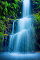 Beautiful Lush Waterfall - PhotoDune Item for Sale