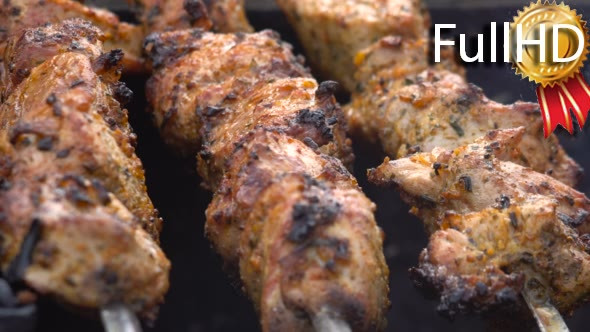 Download Meat Barbecue Pork With Spices on Skewers Big nulled download