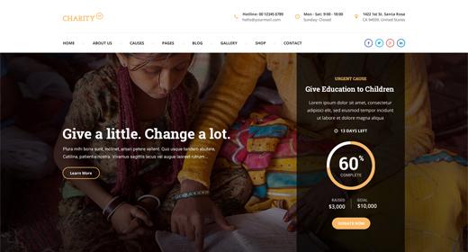 NGO WordPress theme