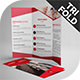 Ditto Tri-Fold Brochure Template
