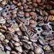 Coffee machine Roasted 3