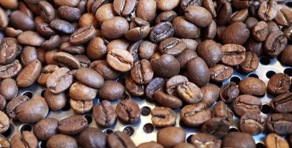 Download Coffee Machine Roasted 5 nulled download