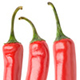 Collection of Isolated Chili Peppers