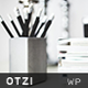 Otzi : Responsive WordPress Theme for Bloggers
