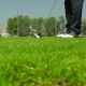 Man Scored The Ball Into The Hole In Golf