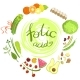Products Rich In Folic Acid Infographic