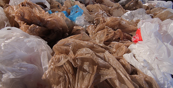 Download Used Plastic Bags nulled download