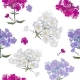 Seamless Exotic Floral Fashion Pattern