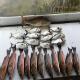 FishingInGulfShores