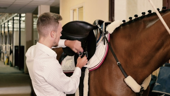 Download Man Binds a Saddle To The Horse nulled download