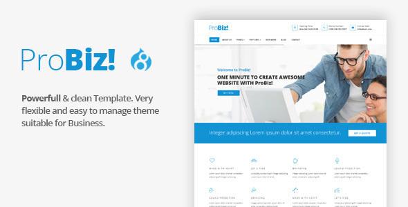 ProBiz! - Multipurpose Business Drupal 8 Theme