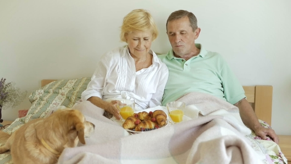 Download Wife Feeds Husband Lunch. nulled download