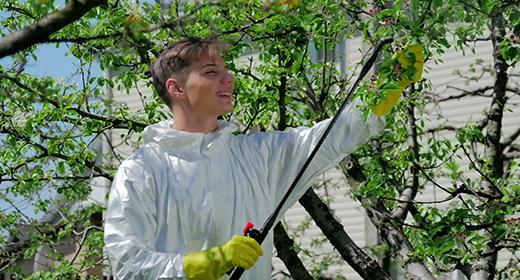 Man working in the garden 4K