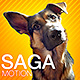 SAGA_motion