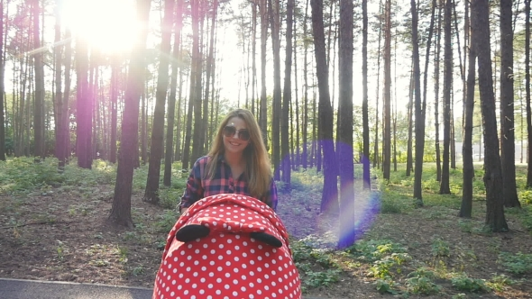 Download Mother With Baby In Buggy Walking In Park nulled download