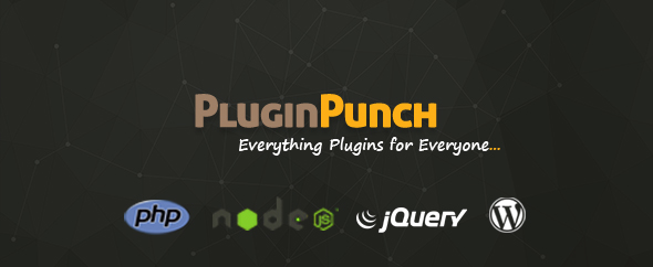 Plugin punch author cover