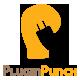 pluginpunch