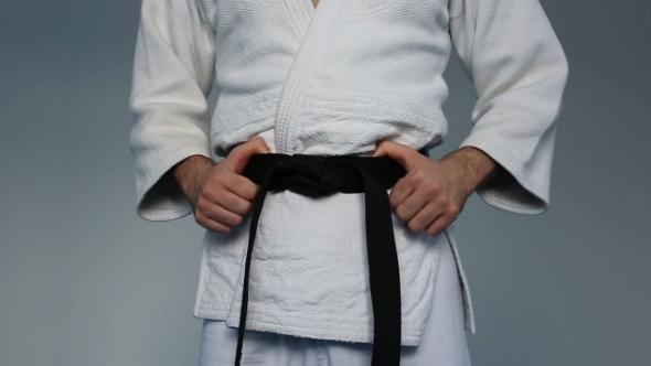 Download Martial Arts Master With Black Belt nulled download