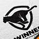 Tiger Run Logo