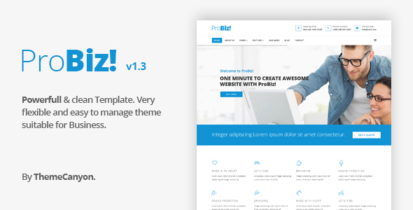 preview. large preview - ProBiz! - Multipurpose Business Template