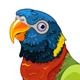 Running Lory Parrot