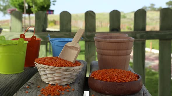 Download Lentils nulled download