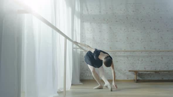 VideoHive Young and Beautiful Ballerina Exercising Dancing at the Barre 19473645
