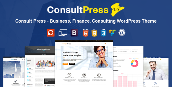 Seek the advice of Press – Finance &amp Consulting Business enterprise WordPress Theme (Business enterprise)