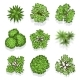 Top View Different Plants and Trees Vector Set