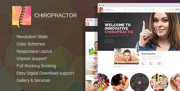 Download Chiropractor - Therapy and Rehabilitation WordPess Theme nulled download