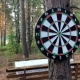 Game Darts In The Woods