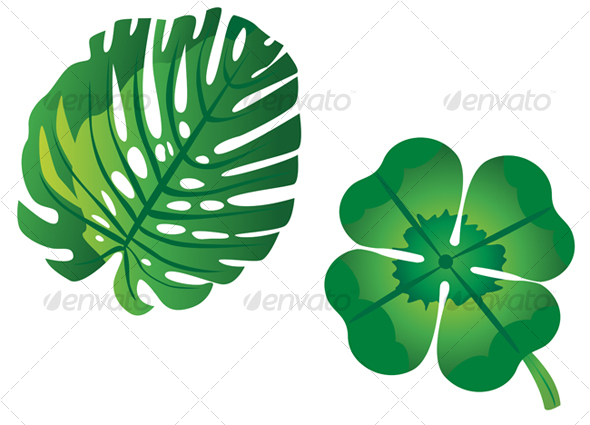Two green leaves - Flowers & Plants Nature
