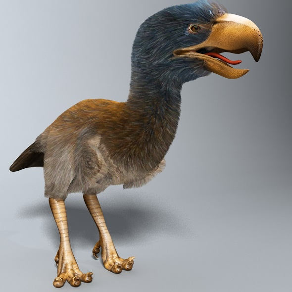 Titanis Walleri - Terror Bird RIGGED - 3DOcean Item for Sale