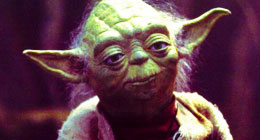 YODA approved - VIDEOHIVE