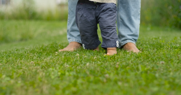 Download Father Learns Child Walk Outdoors. Baby First Steps On Grass, . nulled download